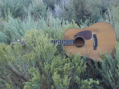my 1946 Martin D18 resting in the sage
